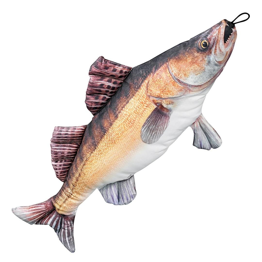 Fladen mjukisfisk gös 70 cm
